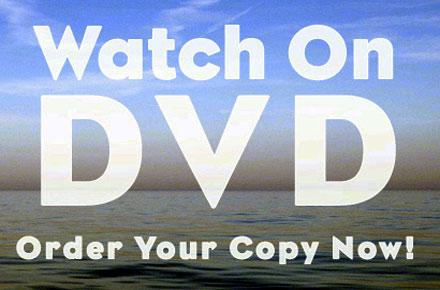 Transforming Loss - DVD